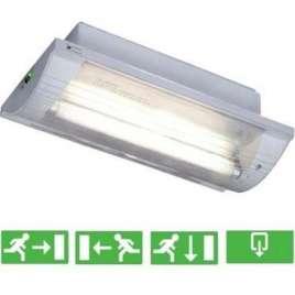 DL-885 TL Noodverlichting inbouw/opbouw 35 x 17,5 cm